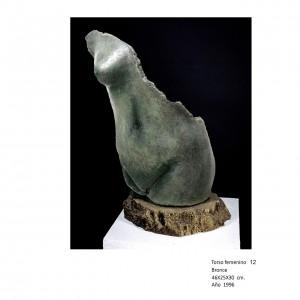45-Torso femenino 12
